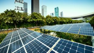 Upward trajectory - environmental sustainability thumb