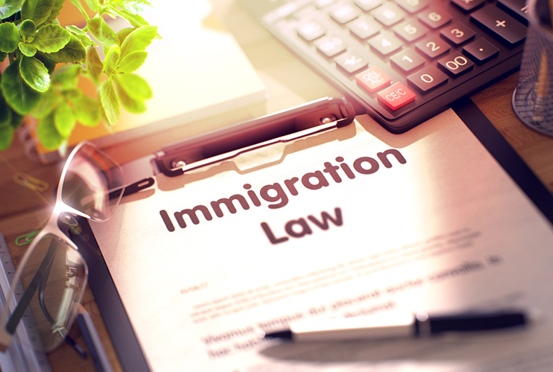 My rights in the time of COVID-19 – Immigration