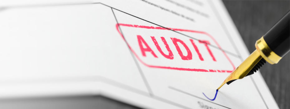 Clean audit with supplier vetting