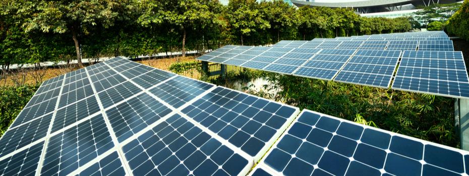 Upward trajectory towards environmental sustainability